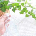 アイビーの水耕栽培。気軽に植物を育ててステキなお部屋にするコツ